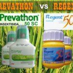 Prevathon vs Regent : Baca Ini Sebelum Mencampur Prevathon 50SC dan Regent 50SC !!